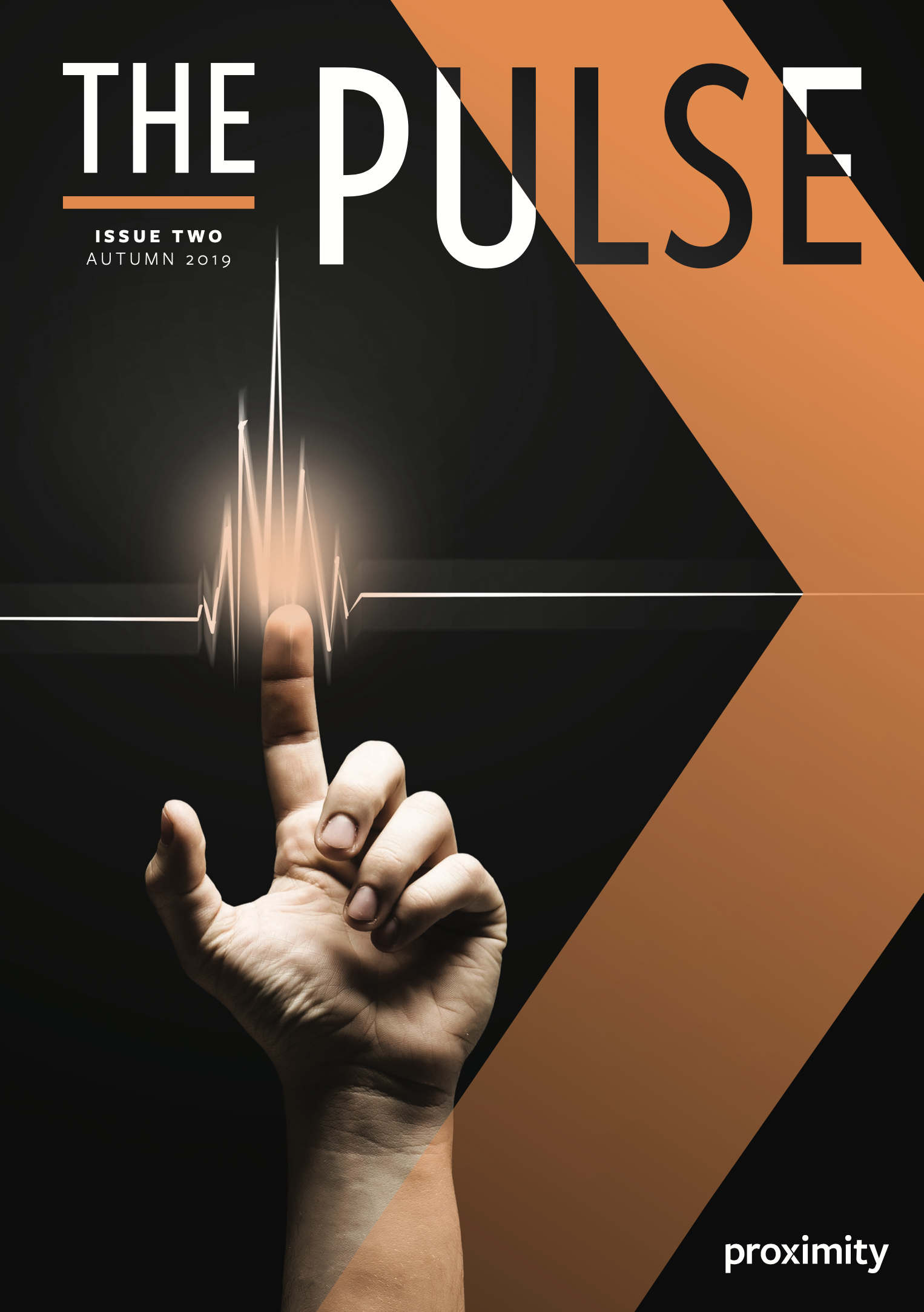 The Pulse Issue 2